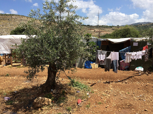 Lebanon's Catholic leaders urgepeace